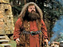 Hagrid - Robbie Coltrane
